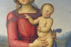 Perugino_1-1